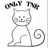 Only TNR (Trap Neuter Release)