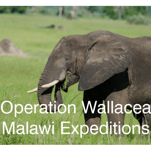 Operation Wallacea Malawi 2020 - Heidi Aguirregoicoa