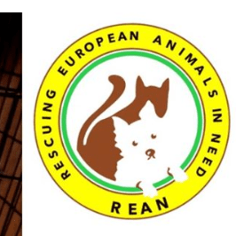 Rescuing European Animals In Need