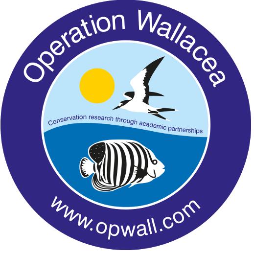 Operation Wallecea Honduras 2019 - Annabelle Early