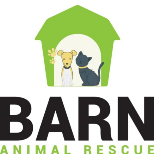 The Barn Animal Rescue Newtownards