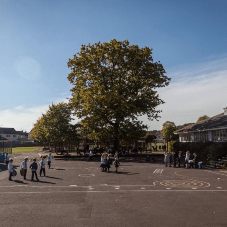 St John's School Midsomer Norton PTA