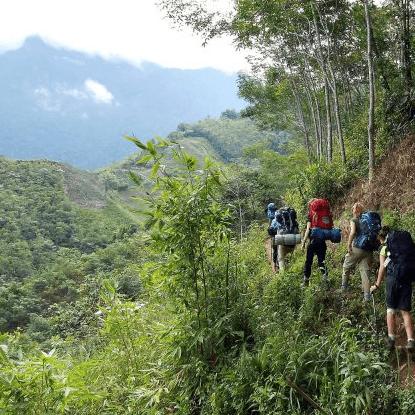 Borneo 2021 - Tessa Royle