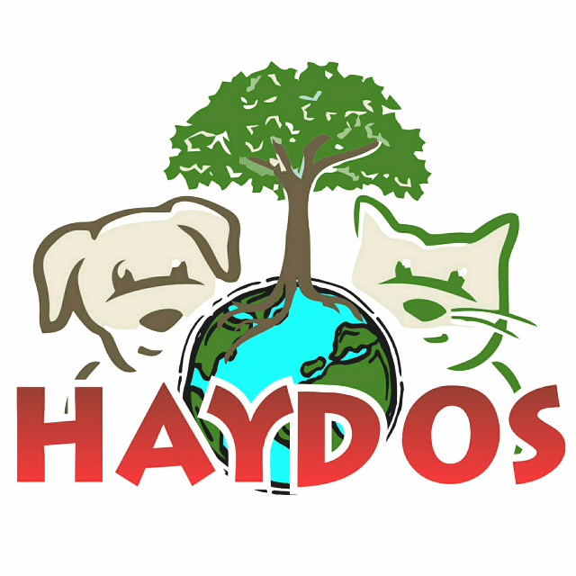 Haydos.org