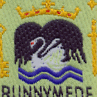 Runnymede District Scout Council