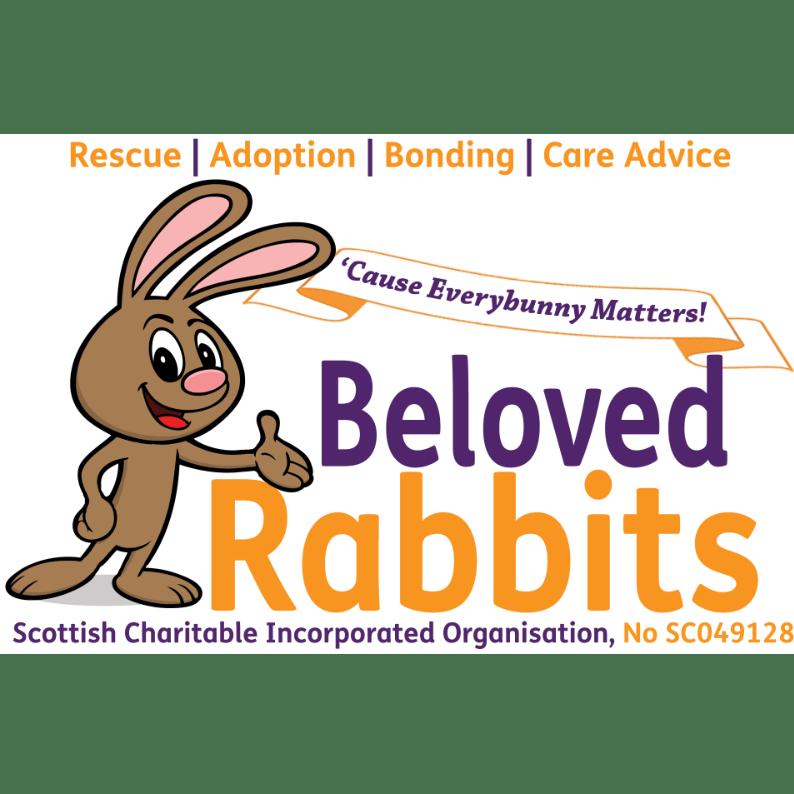 Beloved Rabbits