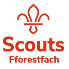 Fforestfach Scouts