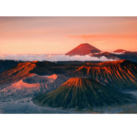 World Challenge Java 2021 - Daniel Donkin