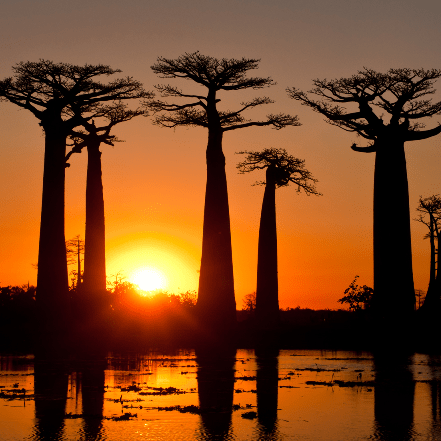 World Challenge Madagascar 2019 - William Slater