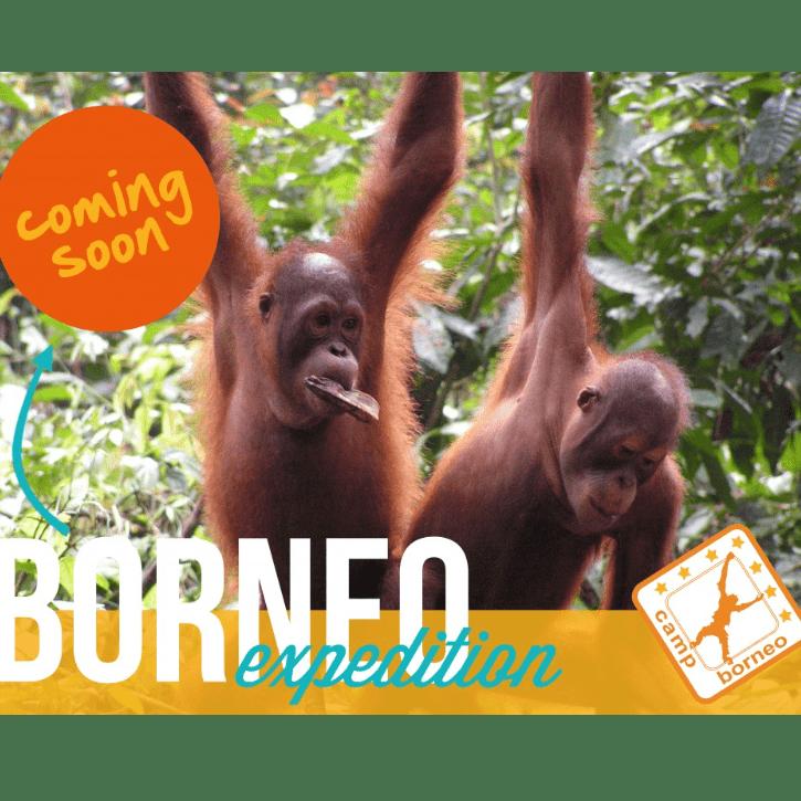 Camps International Borneo 2020 - Jack Lovegrove