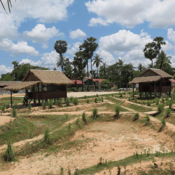 Camps International Cambodia 2020 - Sarina Green