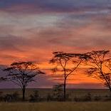 Tanzania 2019 - Erin Flanagan