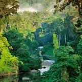 World Challenge Borneo 2021 - Josie Varghese