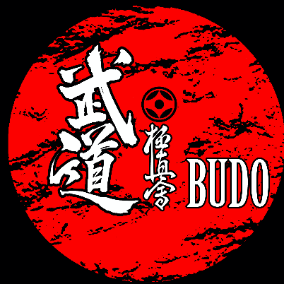 Budo Kyokushinkai Karate club