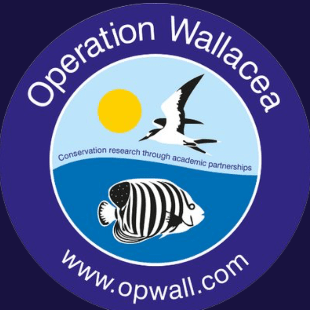 Operation Wallacea Indonesia 2020- Alice Field