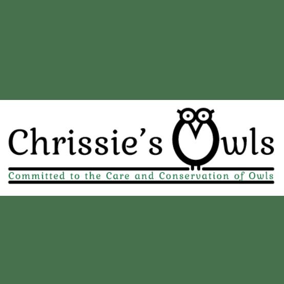 Chrissie's Owls & Stonesfield Owl Rescue