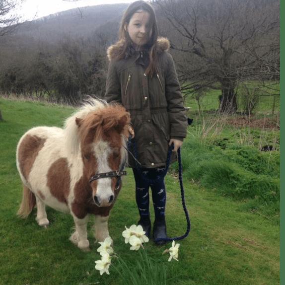 Healing Hooves Devon