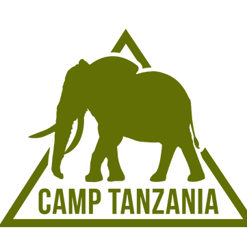 Camp International Tanzania 2019 - Hannah Shelton