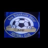 New Brookvale Social Football Club