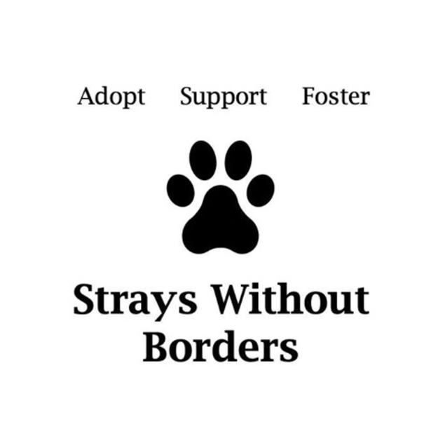 Strays Without Borders