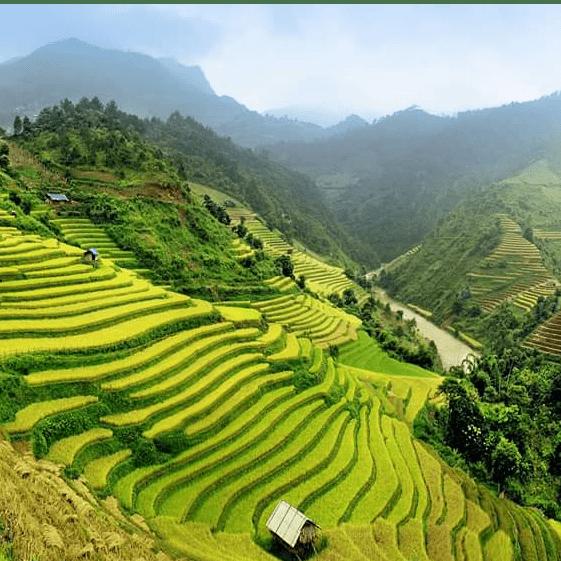 Vietnam Trek 2019  - Judy Macdonald