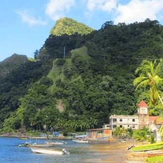 Operation Wallacea Dominica 2018 - Elena Greenhalgh