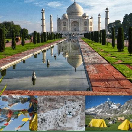 True Adventure Ladakh 2021 - William Connor