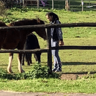 Kent Equine Facilitated Learning