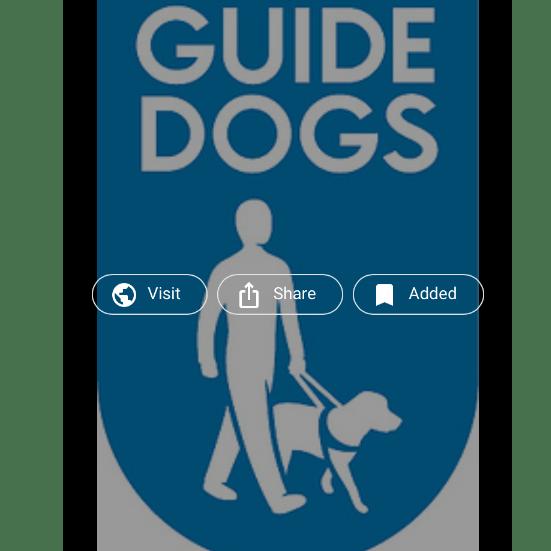 London Marathon 2020 for Guide Dogs - Elaine Grice