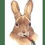 Bunny Burrows