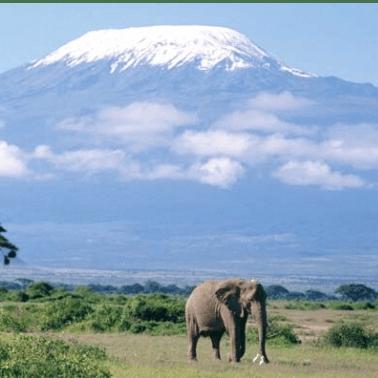 Mount Kilimanjaro 2019 - Claire Featherstone