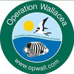 Operation Wallacea Honduras 2019 - Sylvia.C.Obika
