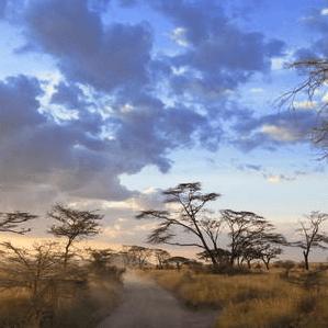 World Challenge Tanzania 2019 - Meera Mistry