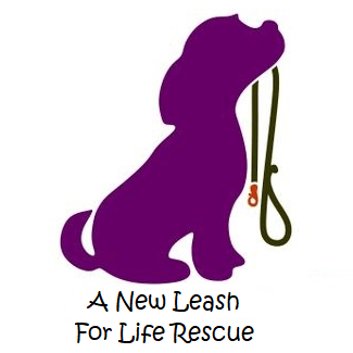 A New leash for life rescue