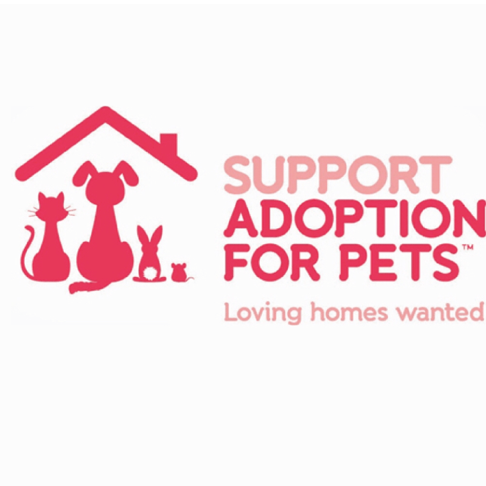 Velocity ZIP Wire Challenge for Support Adoption For Pets - Jamie Maddison