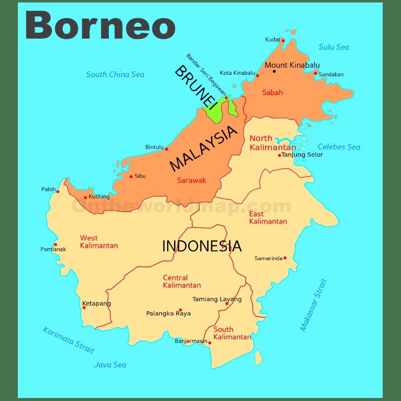 True Adventure Borneo 2020 - Charlotte Jones