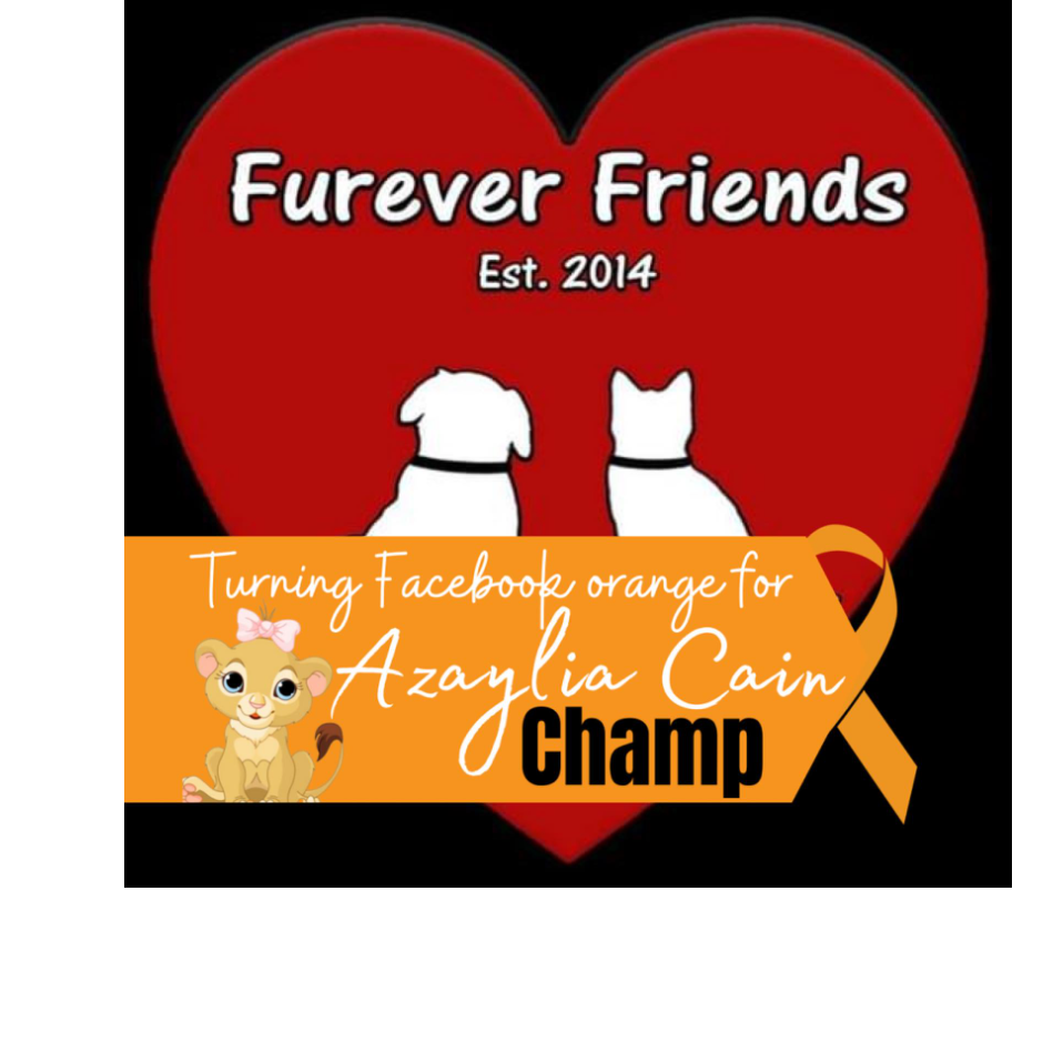 Furever Friends Animal Rescue