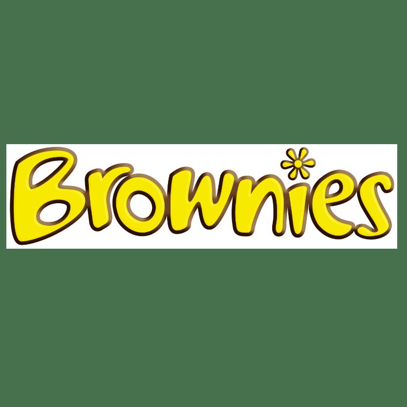 2nd camborne brownies