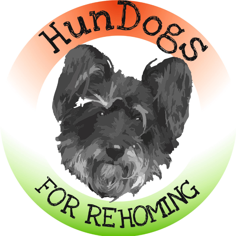 Hungary Dog Rehoming