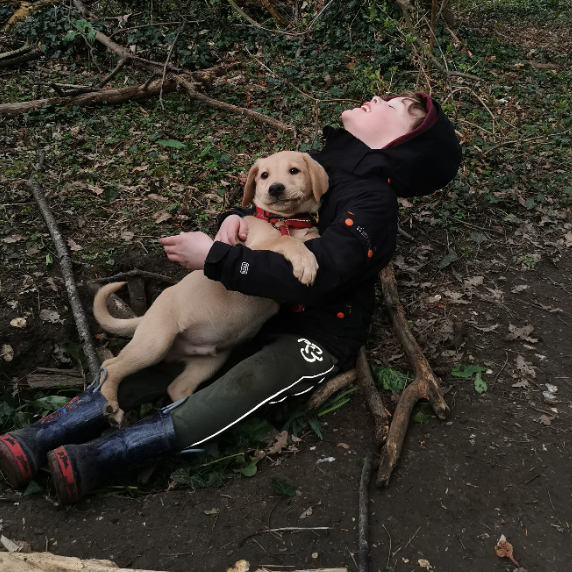 Beau's Registered Autism Assistance Dog