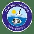 Operation Wallacea Dominica 2021 - Chloe Greenlay