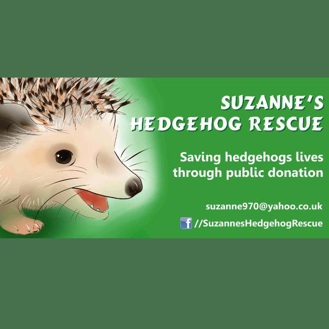 Suzanne's Hedgehog Rescue - Walpole St Peter