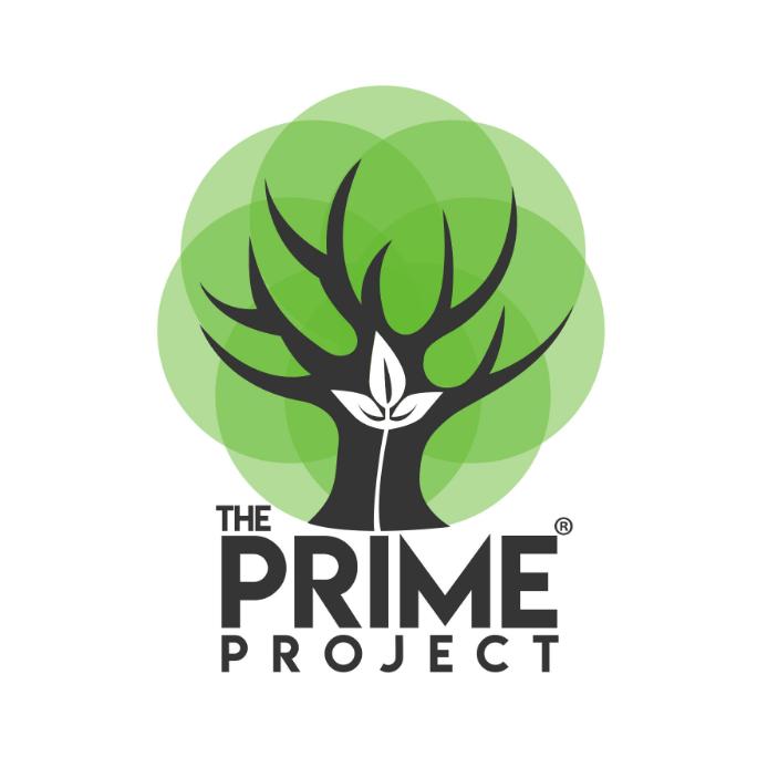 theprimeproject