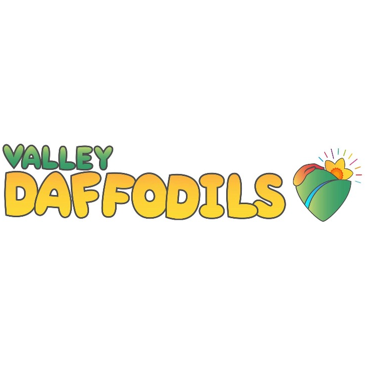 Valley Daffodils