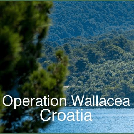 Operation Wallacea Croatia - Miguel Cortijo Martínez