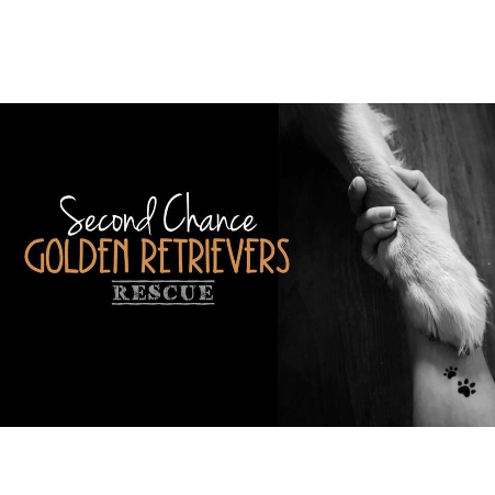 Second Chance Golden Retriever Rescue