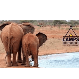 Camps International Kenya 2021 - Bella Richards