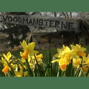Woodmansterne Primary School (Banstead, Surrey)