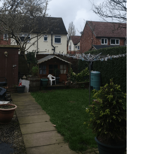 Tree of Hope - Amelias New Garden