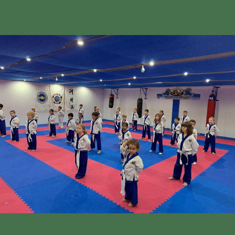 Ninja Dragons Kids Martial Arts
